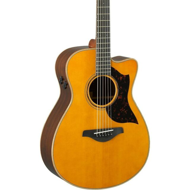 Electric Acoustic Guitar Ac3R