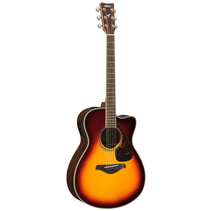 Electric Acoustic Guitar Fsx830