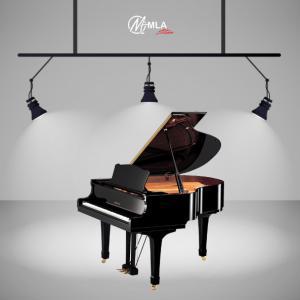 Grand Piano Yamaha C1