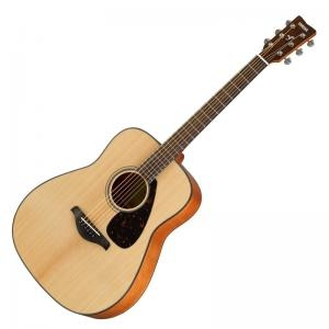 Folk Guitar Fg800