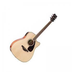 Electric Acoustic Guitar Fgx820