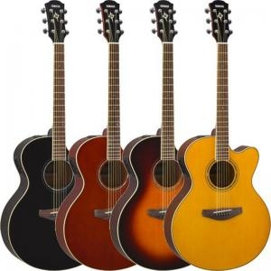 Electric Acoustic Guitar Cpx600