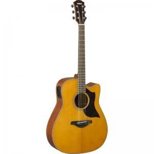 Electric Acoustic Guitar A1M