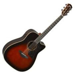 Electric Acoustic Guitar A3R