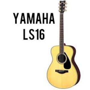 Acoustic Guitar LS16/LL16
