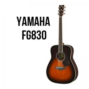 Folk Guitar Fg830