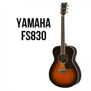 Folk Guitar Fs830