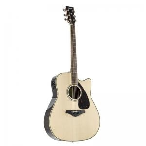 Electric Acoustic Guitar Fgx830