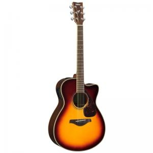 Electric Acoustic Guitar Fsx830