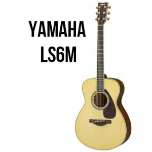 Acoustic Guitar Ls6M