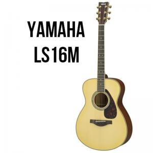 Acoustic Guitar Ls16M