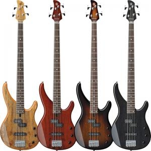 Electric Bass Trbx504