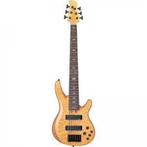 Electric Bass Tbr1006J