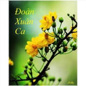 Đoản Ca Xuân - Thanh Sơn