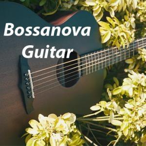 Bossanova Guitar V13